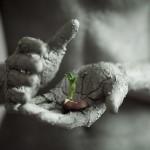 Весенние ресурсы, пояснение