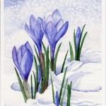 Весенние ресурсы 22 февраля-20 марта